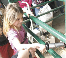 "<div class=""source"">Matt Birkholtz</div><div class=""image-desc"">MCE second grader Annastacia Bales sticks her finger in the milk machine used to drain the milk from the cows udders.</div><div class=""buy-pic""><a href=""/photo_select/10379"">Buy this photo</a></div>"