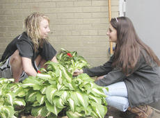 "<div class=""source"">Bryan Marshall</div><div class=""image-desc"">Morgan Roberts and Michaela Goderwis enjoy chatting while they plant flowers.</div><div class=""buy-pic""><a href=""http://web2.lcni5.com/cgi-bin/c2newbuyphoto.cgi?pub=195&orig=IMG_3962.jpg"" target=""_new"">Buy this photo</a></div>"
