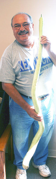 """<div class=""""source""""></div><div class=""""image-desc"""">John DiGirolamo of Dry Ridge grew this Cucuzza (Sicilian squash) on his Baton Rouge Road farm. It was 68 inches long or 5 1/2 feet. DiGirolamo said they can grow to 6 feet long and are grown on a trellis so they can grown down.</div><div class=""""buy-pic""""><a href=""""/photo_select/16031"""">Buy this photo</a></div>"""