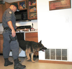 "<div class=""source"">Jamie-Baker Nantz</div><div class=""image-desc"">Jerry Handy of the Kentucky State Police and his drug dog, Luke, check for the presence of drugs at a Dry Ridge apartment. </div><div class=""buy-pic""><a href=""http://web2.lcni5.com/cgi-bin/c2newbuyphoto.cgi?pub=195&orig=dog%2Bsearches_0.jpg"" target=""_new"">Buy this photo</a></div>"