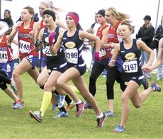 """<div class=""""source""""></div><div class=""""image-desc"""">Elizabeth Robinson, Hayley Leach and Summer Dearing get out to a quick start at the Class 3A Region 5 Championship on Nov. 3. Leach and Dearing earned individual spots in the state meet. Photos by Dave Clark</div><div class=""""buy-pic""""></div>"""