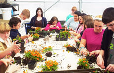 """<div class=""""source""""></div><div class=""""image-desc"""">Grant County High School Future Farmers of America students plant flowers to sell. The FFA will sell a variety of plants on May 5 through May 10. For more information, contact Larry Butler at 859-824-9739. Photo submitted. </div><div class=""""buy-pic""""><a href=""""/photo_select/20398"""">Buy this photo</a></div>"""