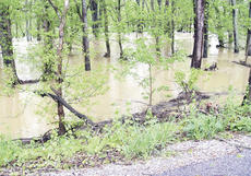 """<div class=""""source"""">Jamie Baker-Nantz</div><div class=""""image-desc"""">Heavy rain from the storms, caused flash flooding in the area.</div><div class=""""buy-pic""""></div>"""