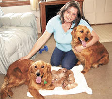 "<div class=""source"">Jamie Baker-Nantz</div><div class=""image-desc"">Kathy Howell, of Dry Ridge, found herself delivering puppies after three female dogs were shoved out of a car a couple of weeks ago in front of Howell's house. She'd like to know the animal's history because she wants to keep them.</div><div class=""buy-pic""><a href=""http://web2.lcni5.com/cgi-bin/c2newbuyphoto.cgi?pub=195&orig=kathy1.jpg"" target=""_new"">Buy this photo</a></div>"