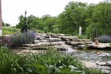 """<div class=""""source""""></div><div class=""""image-desc"""">The pond in Grant County will be on display from 9 a.m. to 6 p.m. on June 28 and it is located at 6330 Warsaw Road in Dry Ridge at the home of Jim and Nancy Lindemood. </div><div class=""""buy-pic""""><a href=""""/photo_select/21051"""">Buy this photo</a></div>"""