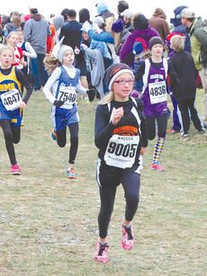 "<div class=""source""></div><div class=""image-desc"">Williamstown Elementary cross country runner Destiny Wallace tries to stay ahead of the pack. </div><div class=""buy-pic""><a href=""http://web2.lcni5.com/cgi-bin/c2newbuyphoto.cgi?pub=195&orig=pic1_91.jpg"" target=""_new"">Buy this photo</a></div>"