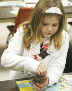 Carly Thomas puts Spanish moss hair on her pinecone angel in art class at Crittenden-Mt. Zion Elementary