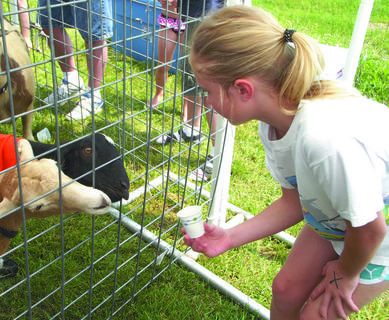 Lannah Herindon feeds the animals at the petting zoo.