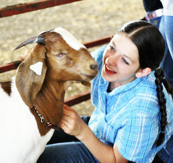 Jessica Ross plays with her goat while watching the 4-H/FFA Open Market Goat Show at the Grant County Fair.