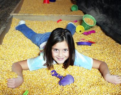 MCE student Madi Shattuck takes a 'swim' in the corn box.