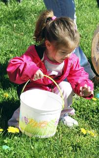 Gracie Holt gets ready to pick up an egg she found.