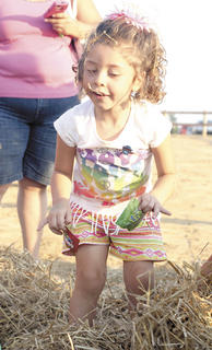 Catalina Furman finds candy in scattered hay during Childrens' Fun Night.