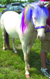 A unicorn makes an appearance at the GC Public Library.