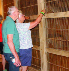 """<div class=""""source"""">Amanda Kelly</div><div class=""""image-desc"""">Bob and Sharyn Urey check out the animal exhibits that show which species would have been on Noah's Ark to celebrate Bob's 91st birthday. </div><div class=""""buy-pic""""><a href=""""/photo_select/29588"""">Buy this photo</a></div>"""