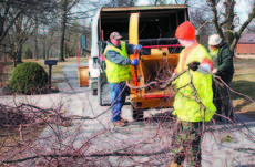 "<div class=""source""></div><div class=""image-desc"">Ken Little and Bobby Robbins, maintenance supervisors for the city of Dry Ridge, utilized inmates from the Grant County Detention Center's Class D program to clear debris and limbs after winter storms pounded Grant County.</div><div class=""buy-pic""><a href=""http://web2.lcni5.com/cgi-bin/c2newbuyphoto.cgi?pub=195&orig=clean%2Bup%2B%25233.jpg"" target=""_new"">Buy this photo</a></div>"